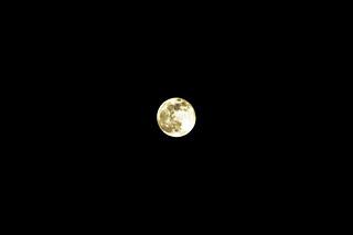 Moon - Free Image