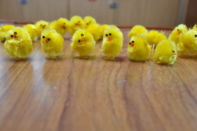 Waving Chicks Single Images | Flickr - Photo Sharing!
