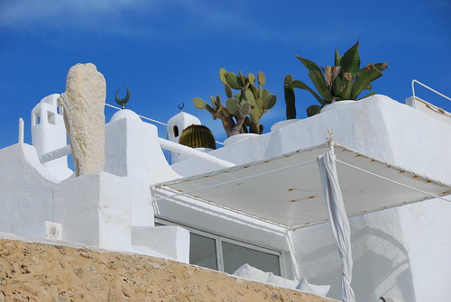 foto tunisia picture medina 风景 hammamet tunesien 图片 非洲 地中海 túnis 阿拉伯 阿拉比亚 突尼斯 风景图 tunesien2010 阿拉比亚图片 阿拉比亚风景