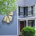 one of my fave house in freehold/day2 by rawedge studio