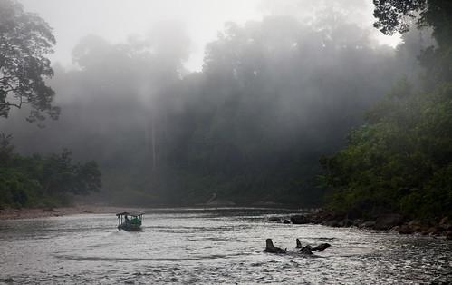 134 Morning boat ride--Endau Rompin , Johor , Malaysia
