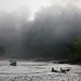 1134 Morning boat ride--Endau Rompin , Johor , Malaysia