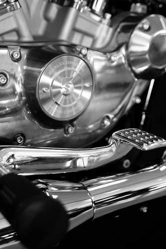 Harley Davidson 021