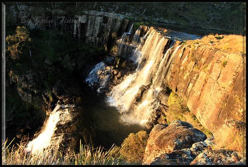 australia nsw ebor eborfalls newenglandtablelands johnfinnan