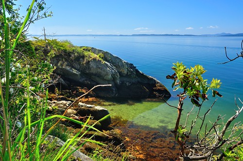 park blue trees sea sky plants sun green water drive washington rocks view state cove sound bellingham wa wildcat puget larrabee chuckanut ikonoki