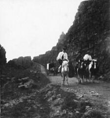 Fólk á hestbaki / People on horseback, 1900-1920
