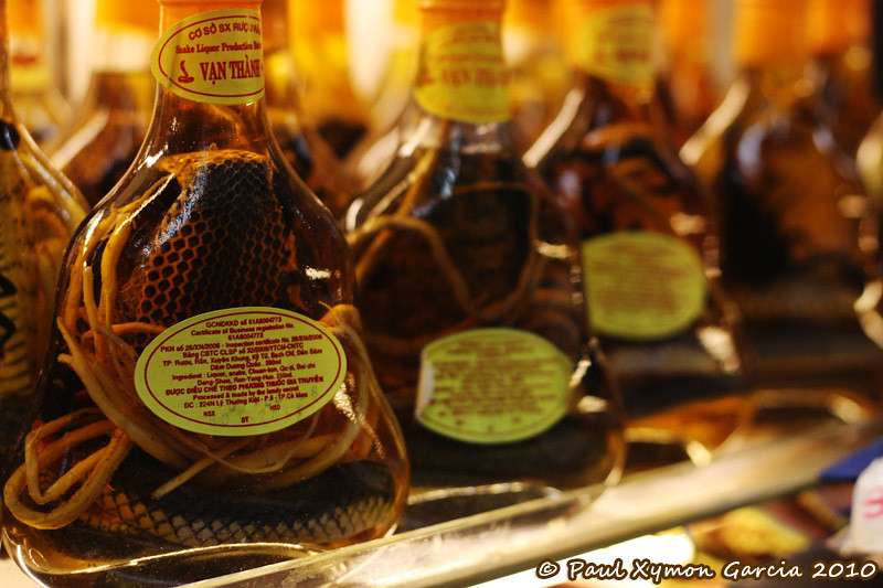 Snake Wine in Saigon