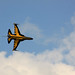 Small photo of Air Power Day 2010 1066