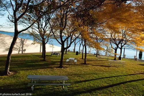 boston bostonma jfklibrary dorchesterbay fall fallfoilage sunrise wallpaper