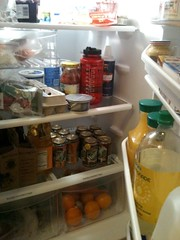 What's in your fridge? by EmilyNorton