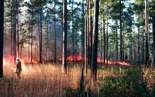 An Active Prescribed Burn