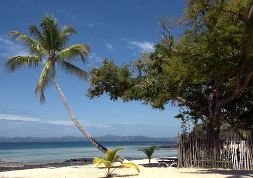 pier mare tamarindo madagascar palme oceanoindiano nosybe explore489 alberosacro buoncompleannopier
