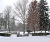 Tél a parkban