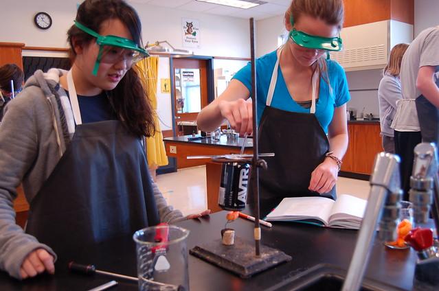 calorimetry lab Flamin hot cheetos calorimetry lab introduction: plants have evolved processes that convert light energy into the chemical bonds of complex molecules.