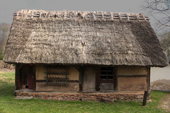 agriculture(0.0), outdoor structure(0.0), ancient history(0.0), building(0.0), log cabin(0.0), thatching(1.0), village(1.0), hut(1.0), wood(1.0), shack(1.0), house(1.0), rural area(1.0),