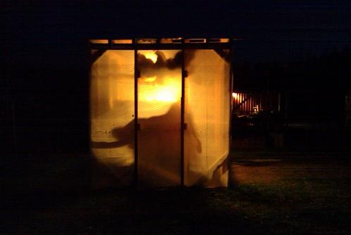 Chicken coop lantern