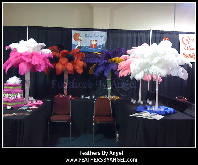 Rent ostrich feather centerpieces flickr photo sharing