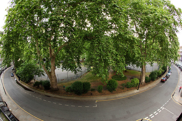 Jenkins Hotel view, London