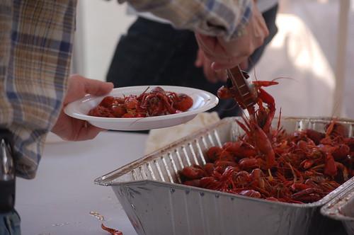 Rajun Cajun Crawfish Festival, Memphis, Tenn.