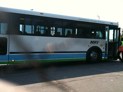 310 Downtown Shuttle