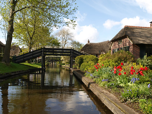 Tulpen in Giethoorn