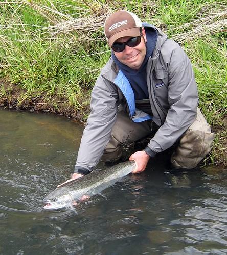 Willamette valley summer steelhead report jurassic for Willamette river fishing report