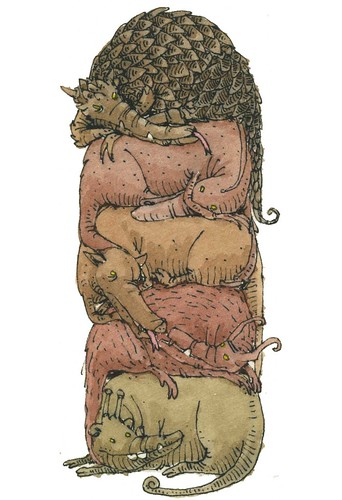 bedfellows by Mattias Adolfsson