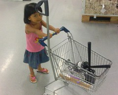 play(0.0), cage(0.0), toy(0.0), shopping cart(1.0), cart(1.0),