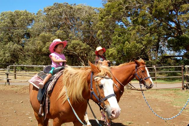 Horseback Riding Hawaii Big Island
