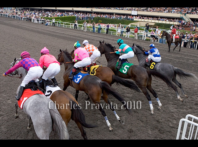 Philadelphia park horse racing selections