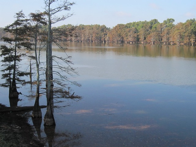 Yazoo Stream Yazoo River Images - R...