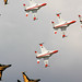 Small photo of Air Power Day 2010 787