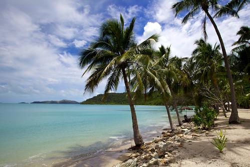 Tropical Beach - Long Island