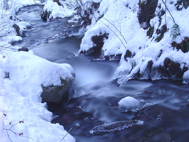 Snowy brook