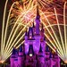 Wishes - A Nighttime Spectacular by Matt Pasant