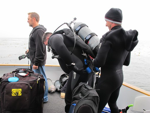 Testing Underwater Cameras for Scuba Labs