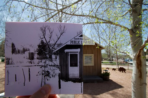 Pine Library Then and Now