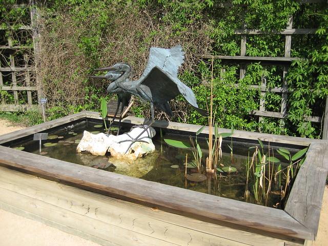 Nc Botanical Garden Chapel Hill Flickr Photo Sharing