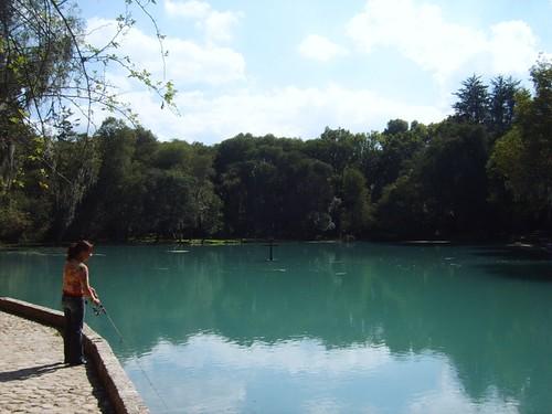 trout farm huasca de ocampo hidalgo mexico travel trucha granja criadero pond lago pesca fish water agua