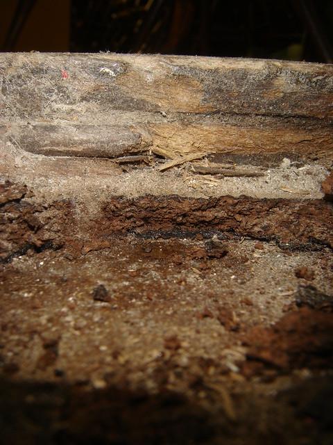 black asbestos mastic - photo #43