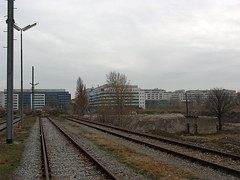 IMG_0219