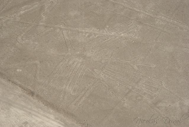 Nazca Lines, Bird Geoglyph, Peru
