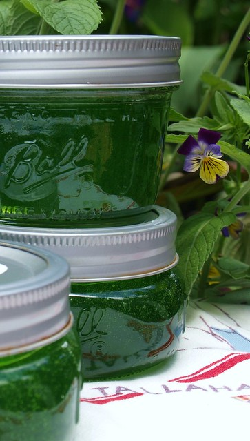 Mint Jelly | Flickr - Photo Sharing!