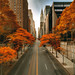 Fall in New York City by mudpig