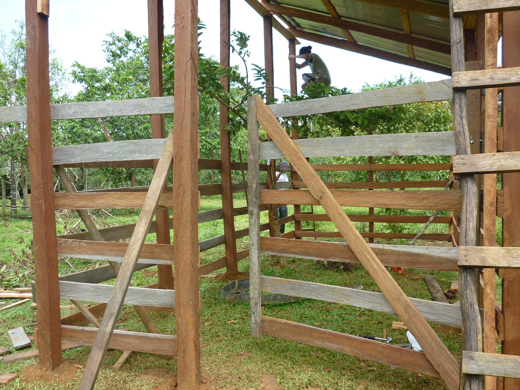 Front view of the completed enclosure gate.   Read 'Panthera's Guide to Building a Livestock Corral' from our October 2010 newsletter at www.panthera.org/november-2010-newsletter.  Learn more about the work Panthera's Costa Rica team is doing at pantheracostarica.org/.   Also read about our jaguar conservation work in other countries through our Jaguar Corridor Initiative - www.panthera.org/programs/jaguar/jaguar-corridor-initiative - and Pantanal Jaguar Project - www.panthera.org/programs/jaguar/pantanal-jaguar-project.    © Daniel Corrales/Panthera