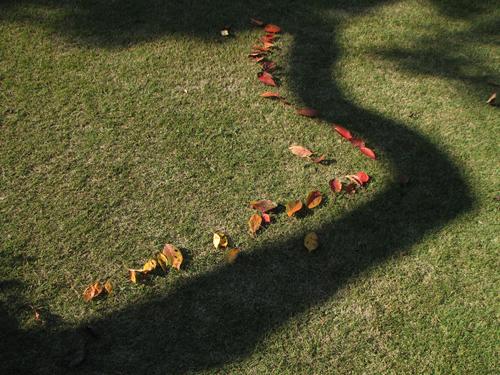 08-11-13gyoen-14-Land art