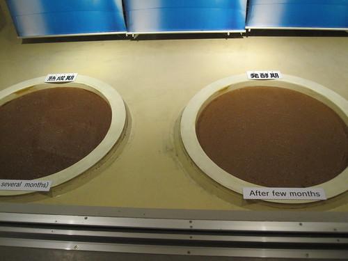 もろみの発酵、熟成過程