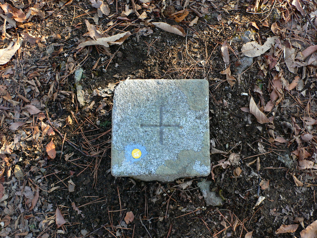 triangulationmarker