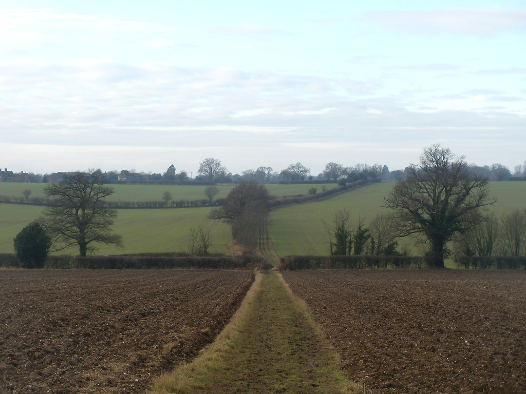 Bridleway - looking back Welwyn Circular