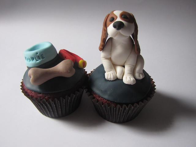 Cavalier King Charles Spaniel Cupcake Flickr Photo